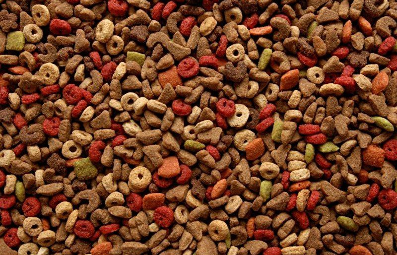Pet Food Processors – Additional Enforcement Looming